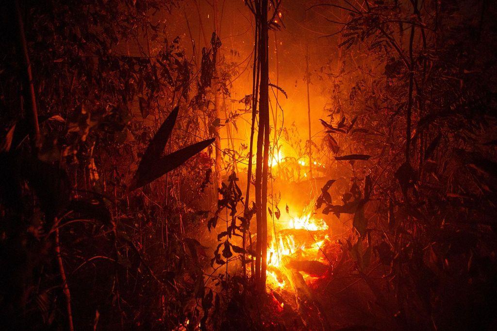 amazon-fires-2-k0gip4d5