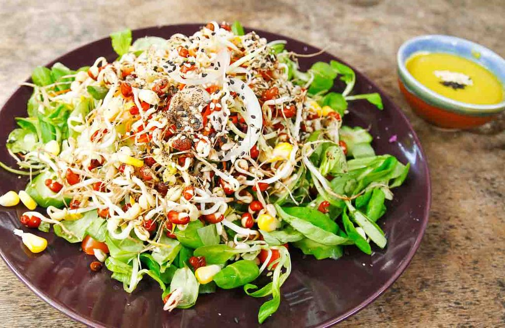 Image result for sprout salad