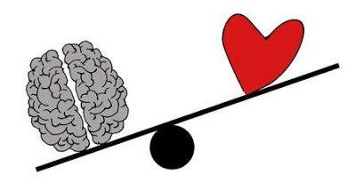 brain-2146167-340-k1elgek4