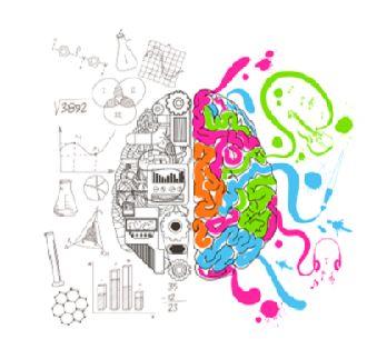 brain-k0j67w50