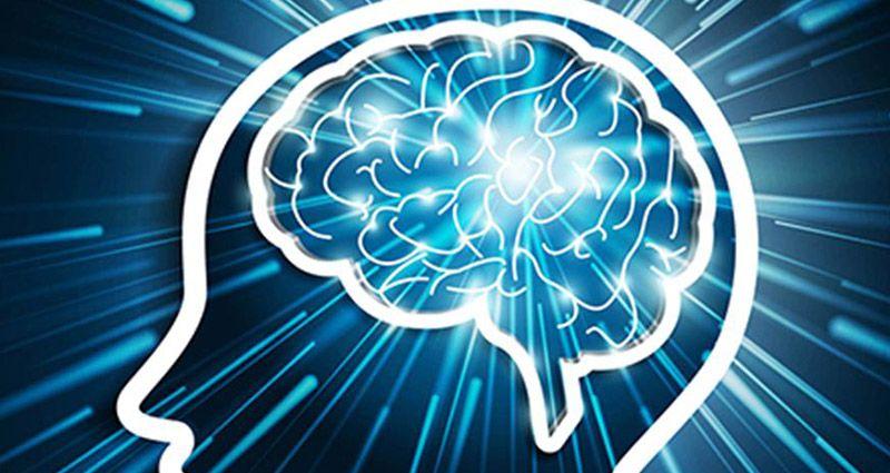 brainpower-k2590yw2