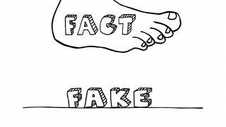 facts-k4qs0qxb