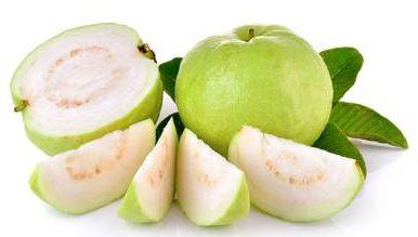 guava-edit-k0t73g8q