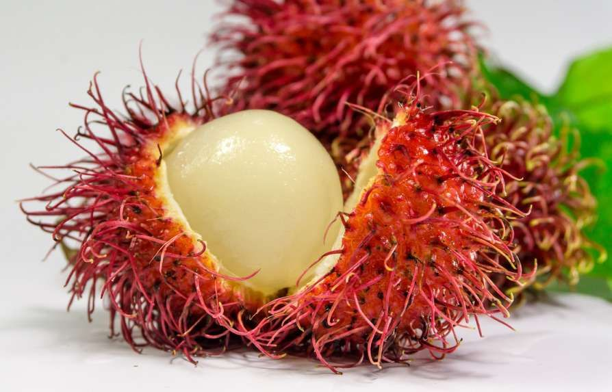 8 Fruits You Have Probably Never Tried Before | Wrytin