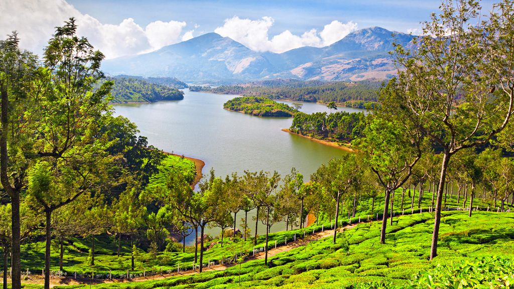 munnar-pic-k2it0gm5