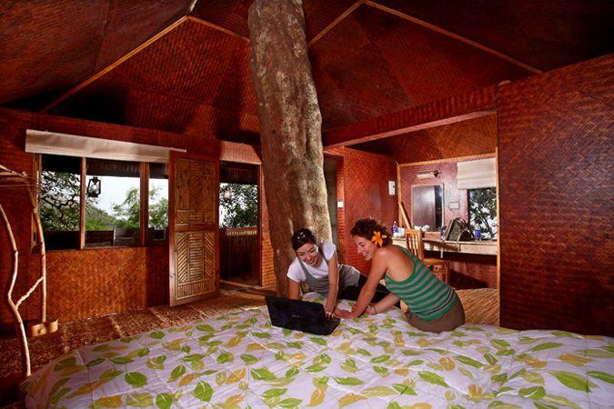 munnar-tree-house-k2ix77lh
