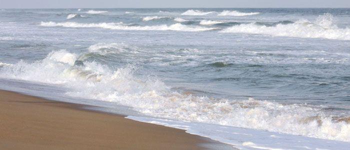 puri-beach-k2m0qzi1